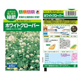 【種(たね)】 タキイ種苗 緑肥 ホワイトクローバ 緑肥 ホワイトクローバ