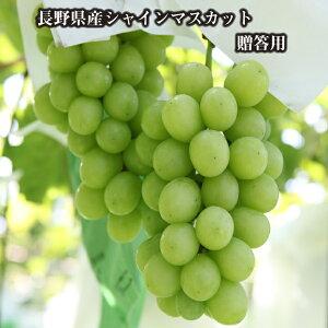 長野県産 シャインマスカット 贈答用 秀品 2房(約1kg)【常温】
