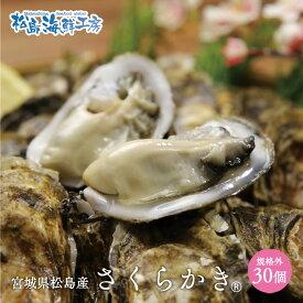 送料無料 松島産 産直 さくらかき 30個 ※只今の季節は加熱用です 活出荷 牡蠣 カキ かき 貝 父の日