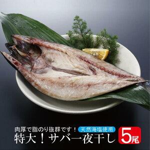 サバ一夜干し 5枚セット(1尾:約350g)( さば サバ 鯖 塩サバ 干物 一夜干し ノルウェー 魚 肴 美容 健康 )