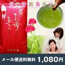 【メール便送料無料】《母の日プレゼント》お母さんありがとう新茶100g 鹿児島茶ギフト ミニカーネーション(造花)付