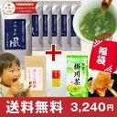 新春福袋 さつまの風100g×6本+選べるお茶又はお菓子 送料無料