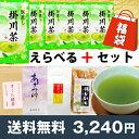 掛川茶7周年記念福袋 お茶100g×6本+選べるおまけ付 深蒸し茶 ゆうパケット送料無料