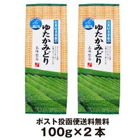 お茶好き家族の ゆたかみどり 100g×2本 鹿児島茶 緑茶 エピガロカテキン ポスト投函便送料無料