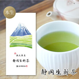 新茶入荷 2021年 新茶 静岡生新茶100g お茶 静岡茶 煎茶 本生仕上げ 緑茶 日本茶 お取り寄せ ポスト投函便送料無料