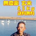 新米 令和3年産 無農薬 玄米 無農薬 無化学肥料 送料無料 玄米 4.5kg (3升)千葉県香取市産 アトピー アレルギー ゲル…