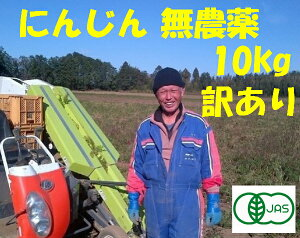 有機 にんじん 無農薬10kg業務用 オーガニック 野菜訳あり 送料無料 ニンジン 無農薬ジュース用 10kg無農薬 にんじん 人参 無農薬 規格外品 有機JAS100%にんじん有機栽培20年以上の実績10キロ