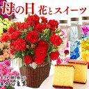 母の日 [カーネーション ハーバリウム 花 鉢花 鉢植え 生花 スイーツ プレゼント 誕生日プレゼント ギフト セット プリザーブドフラワ…