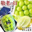 【残りわずか】 敬老の日 贈答用 シャインマスカット ギフト 化粧箱入り [岡山 食べ物 グルメ プレゼント 送料無料 フルーツ 果物 ぶど…