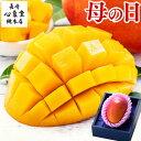 【まだ間に合う】 母の日 [ プレゼント フルーツ 母の日ギフト ギフト ] マンゴー 送料無料 [ 贈答用 高級 果物 食べ物 グルメ 誕生日 …