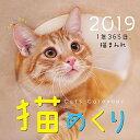 猫めくりリフィル 2019年 CKC19-02