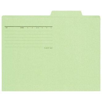 Plus individual folder FL-082IF A4E green (separate folder / box file / individual holder)