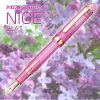 """Character / small characters PNB-20000R # 22 (Plutinum//14 gold pen point) out of Platinum Pen # 3776 century NICE """"Nice"""" lira bold-face /"""