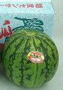八色西瓜(やいろすいか)秀品3L共選品1個【送料無料】(共同選果場にて糖度空洞検査済み)