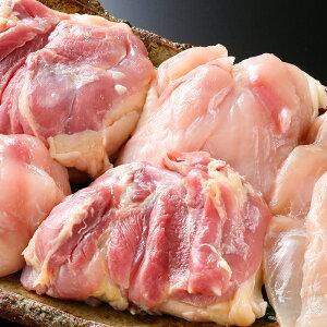 【生肉 鶏肉】【送料無料】純系名古屋コーチン 生肉セット モモ2kg、ムネ1kg(業務用向け)メガ盛り!お得な、まとめ買いセット税込10,000円!【冷蔵】【生肉セット】m0717 焼き鳥 業務用