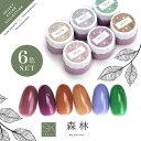 【全6色セット】Select color SKシリーズ 自然派の森林カラー クリアカラージェル カラージェル ジェルネイル セレク…