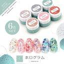 【全6色セット】Select color SOシリーズ ホログラム カラージェル ジェルネイル セレクトカラージェル | カラー ポリ…