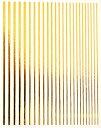 ネイルシール 色々な太さがセットになったライン ゴールド シルバー 未硬化ジェルの上から貼れる強力粘着 | ネイルシ…