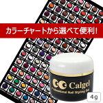 【卸特価!!】caljelカルジェルカラージェル4g