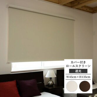 ロールスクリーンフルネスエクシヴエクシブ shading type standardized goods 45cm in width 135cm in height with cover