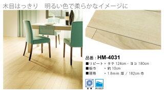 HM-4031