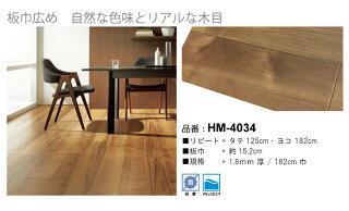 HM-4034
