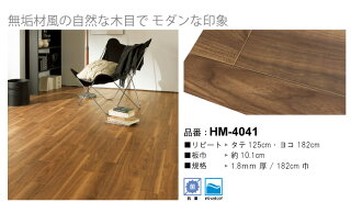 HM-4041