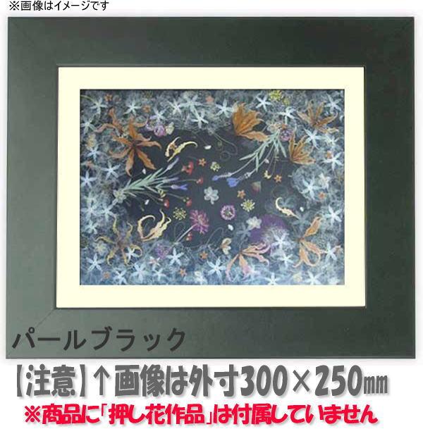 押し花額縁 5659/パールブラック 大衣サイズ(ガラス506×391mm)【os-B】
