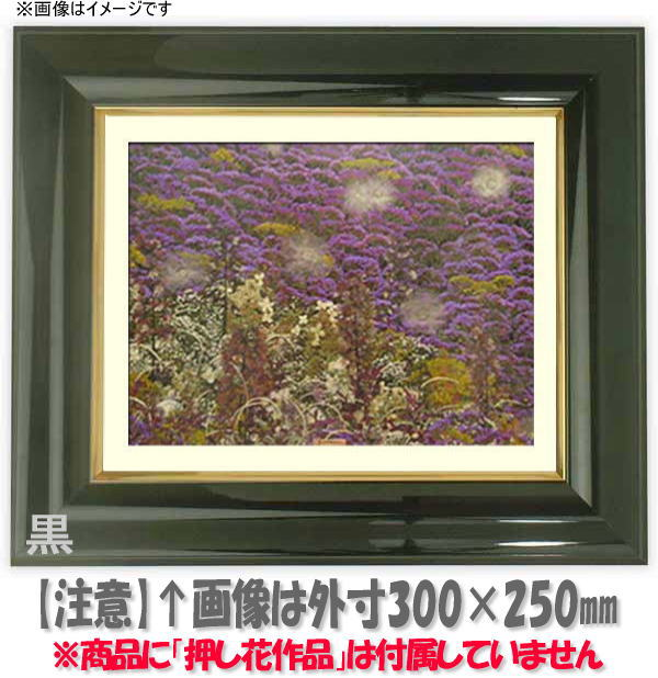 押し花額縁 681/黒 大衣サイズ(ガラス506×391mm)【os-B】