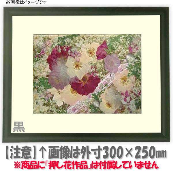 押し花額縁 713/黒 L37額サイズ(ガラス寸法368×206mm)【os-C】