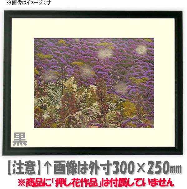 【キズあり品】押し花額縁 J型/黒 18額サイズ(ガラス寸法178×133mm)【os-C】