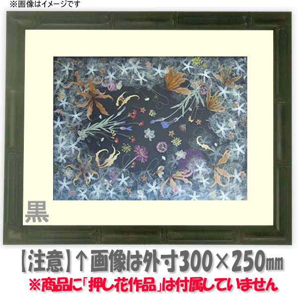 押し花額縁 竹フレーム/黒 L60額サイズ(ガラス寸法600×300mm)【os-C】