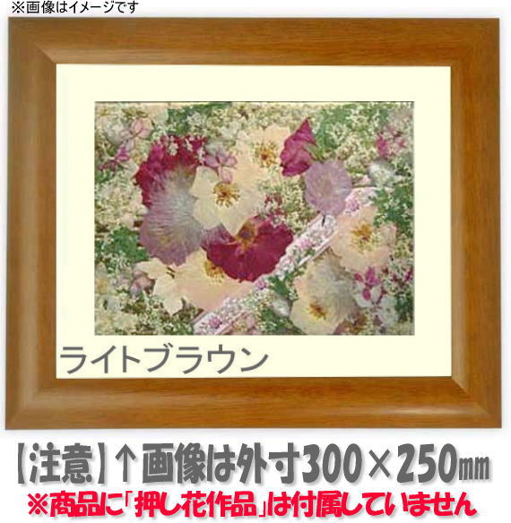 押し花額縁 5021/桜 大衣サイズ(ガラス506×391mm)【os-B】