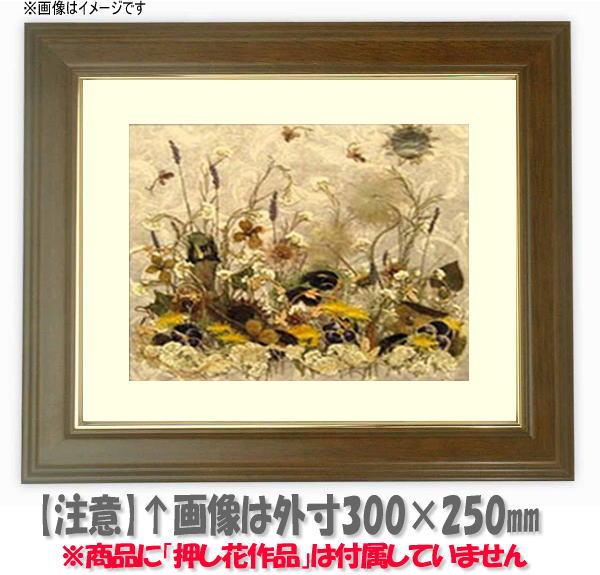押し花額縁 魁No.5/ブラウン 大衣サイズ(ガラス506×391mm)【os-B】