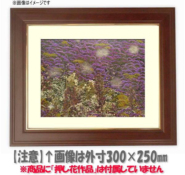 押し花額縁 魁No.5/マホガニー 三三サイズ(ガラス寸法603×452mm)【os-B】