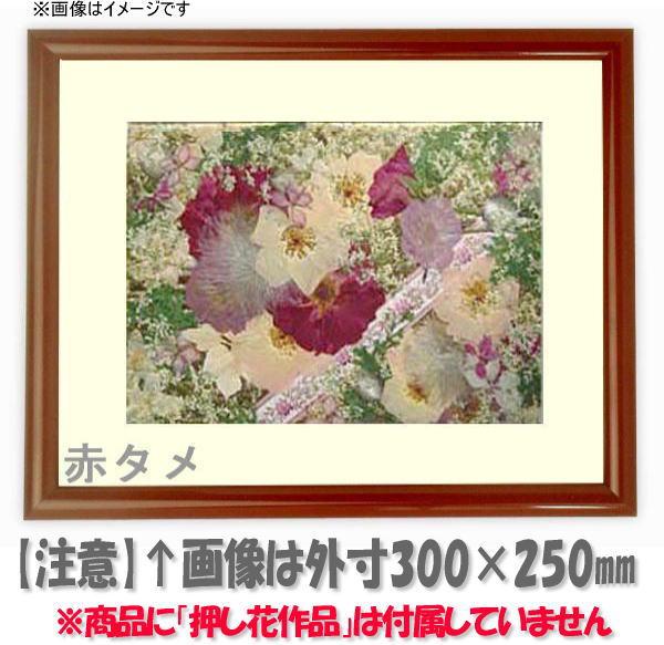 押し花額縁 713/赤タメ L60額サイズ(ガラス寸法600×300mm)【os-C】