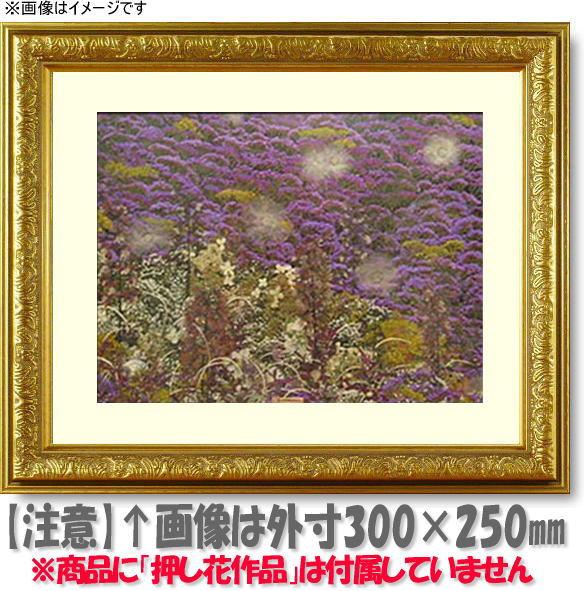 押し花額縁 シャイン/ゴールド L60額サイズ(ガラス寸法600×300mm)【os-C】