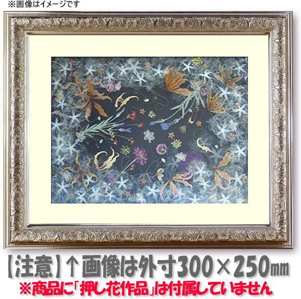 押し花額縁 シャイン/シルバー 49額サイズ(ガラス寸法483×393mm)【os-C】