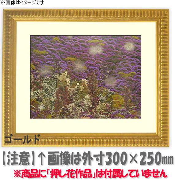 押し花額縁 9602/ゴールド 18額サイズ(ガラス寸法178×133mm)【os-C】