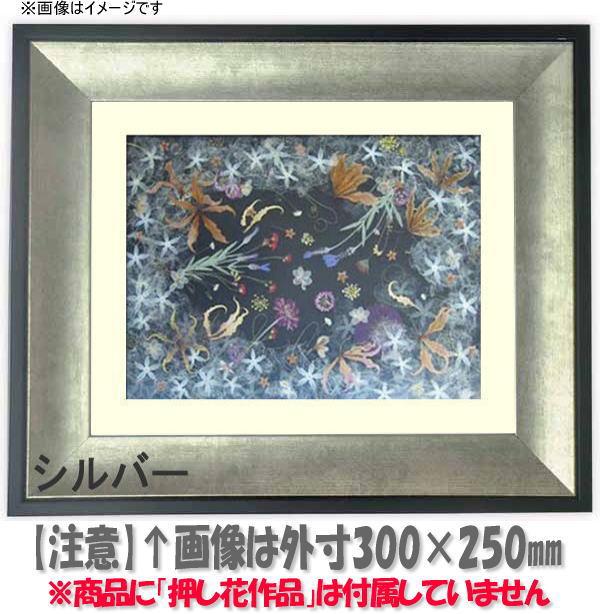 押し花額縁 GR-1903/シルバー 大衣サイズ(ガラス506×391mm)【os-B】