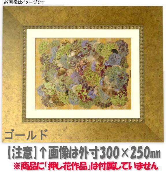 押し花額縁 HQ869/ゴールド 半切サイズ(ガラス寸法542×421mm)【os-B】【絵画/壁掛け/インテリア/玄関/アートフレーム】