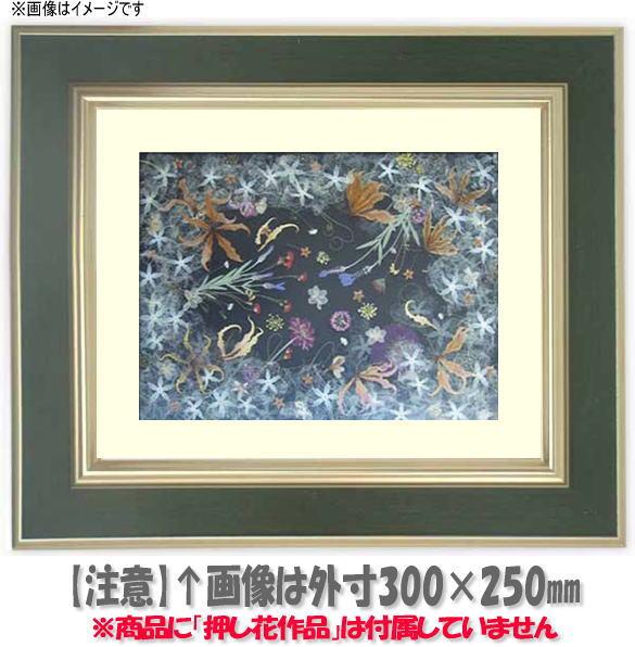押し花額縁 9583/Sグリーン 大衣サイズ(ガラス506×391mm)【os-B】