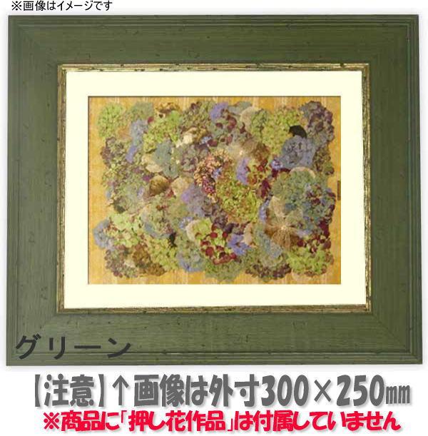 押し花額縁 5264/グリーン 大衣サイズ(ガラス506×391mm)【os-B】