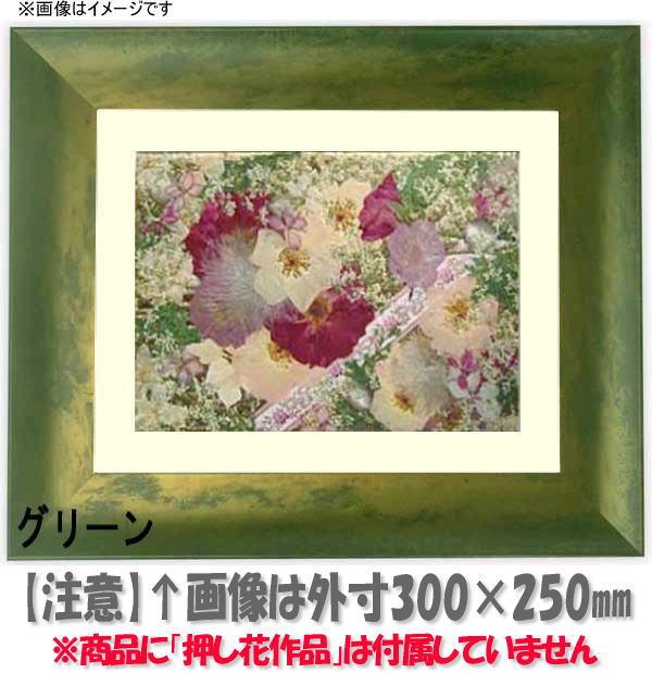 押し花額縁 9615/グリーン 大衣サイズ(ガラス506×391mm)【os-B】