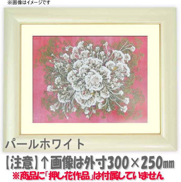 押し花額縁 30009/パールホワイト 大衣サイズ(ガラス506×391mm)【os-B】