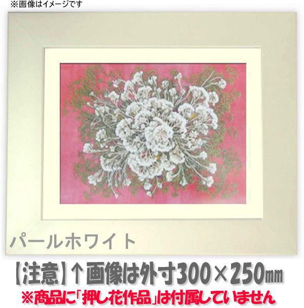 押し花額縁 5659/パールホワイト 大衣サイズ(ガラス506×391mm)【os-B】