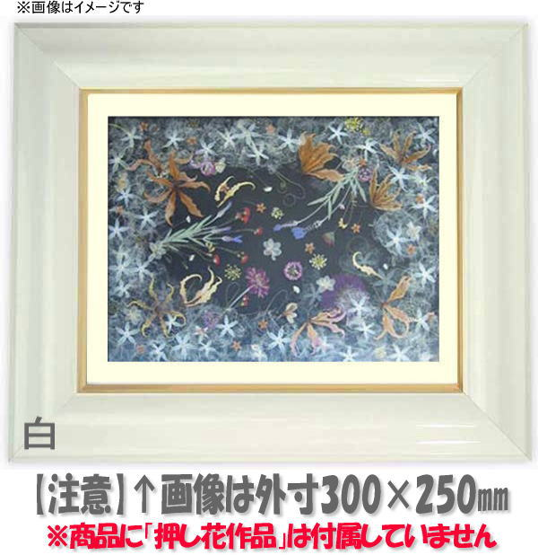 押し花額縁 681/白 大衣サイズ(ガラス506×391mm)【os-B】