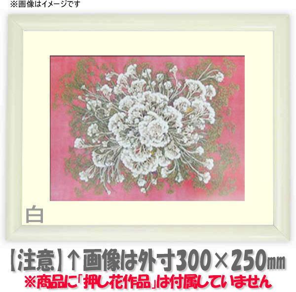 押し花額縁 713/白 L60額サイズ(ガラス寸法600×300mm)【os-C】