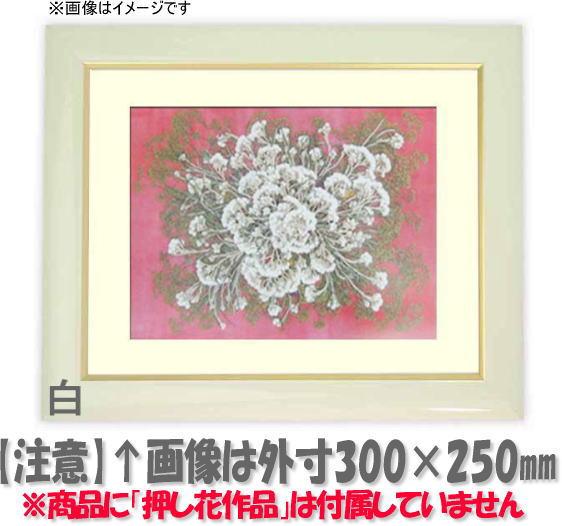 押し花額縁 J501/白 49額サイズ(ガラス寸法483×393mm)【os-C】