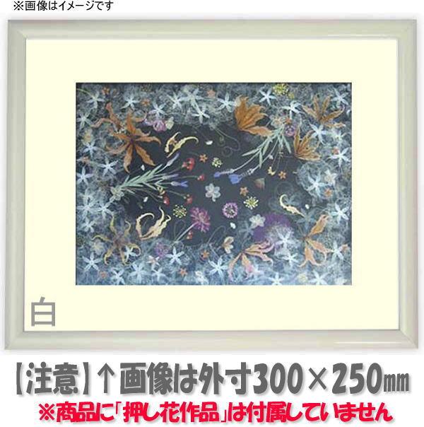 【キズあり品】押し花額縁 J型/白 49額サイズ(ガラス寸法483×393mm)【os-C】
